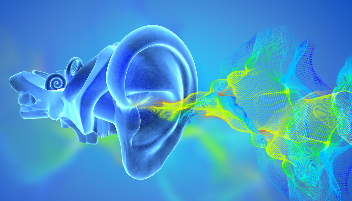 Come arriva il suono all'orecchio