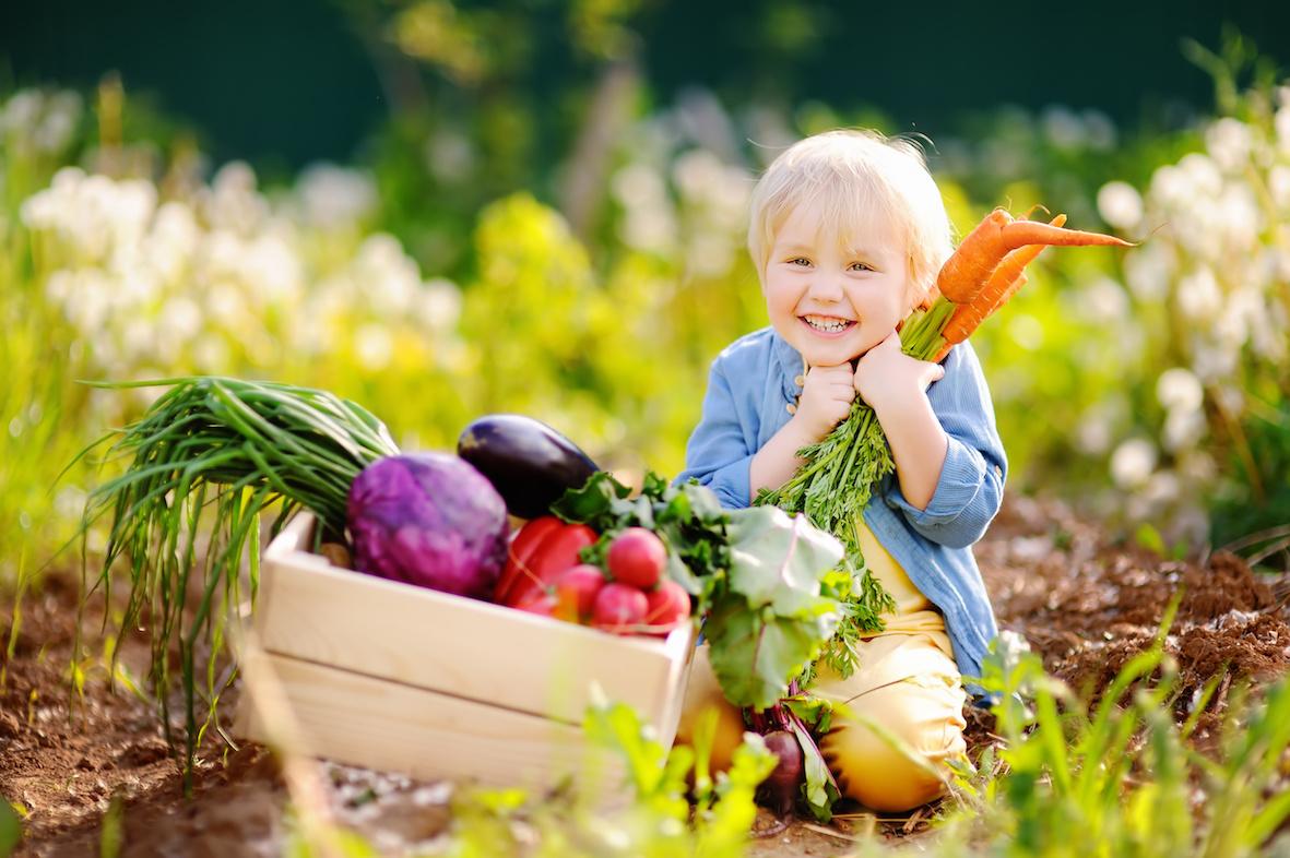 benefici dieta vegana intramundi