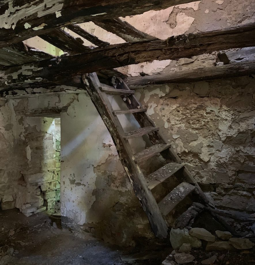 Le Caselle Trekking Appennino Modenese Intramundi
