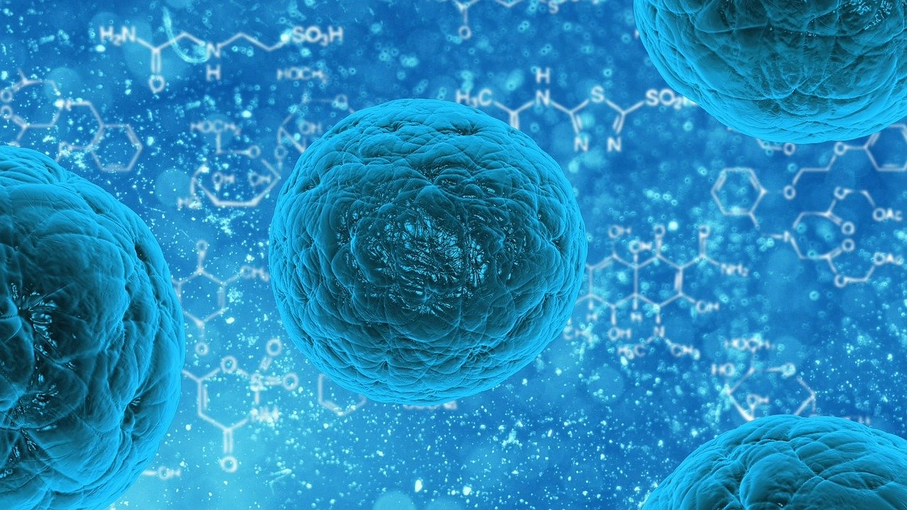 integratori difese immunitarie intramundi