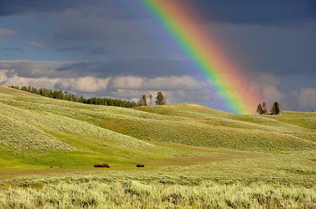 leprecauno arcobaleno intramundi