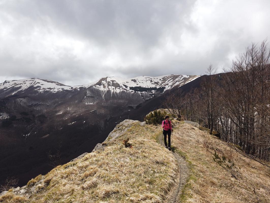 Monte Colombino intramundi