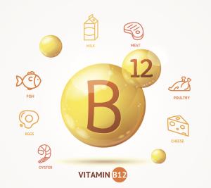 Alimenti con vit b12